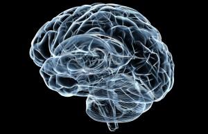 cancro al cervello